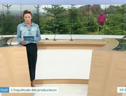 La Maison Pugin sur France 3 Alpes